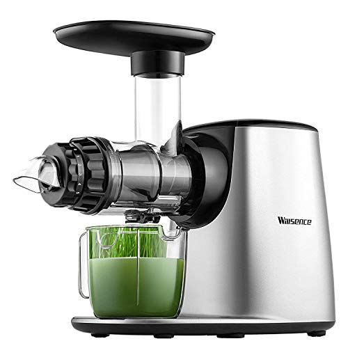 Juicer Machine, Willsence Slow Masticating Juice Extractor