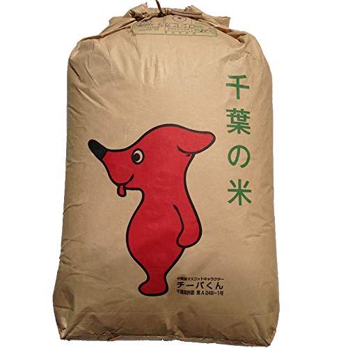 新米 令和2年産 千葉県産 ミルキークイーン (玄米 30kg (玄米10kg×3) (Brown rice 10kg×3))