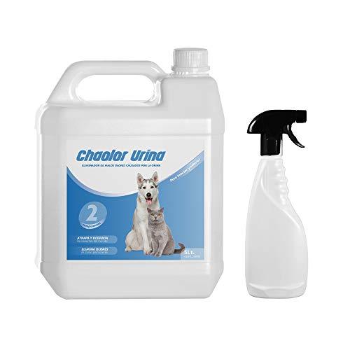 Rc Ocio Spray Neutralizador Enzimatico de Olores para orina, heces o vómitos de Perros y Gatos/eliminador de Malos olores producido por el Pipi de Las Mascotas para Interior y Exterior (5 litros)