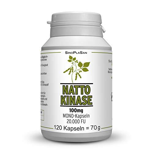 Nattokinase 100mg pro Kapsel (vegan), 120 Kapseln, 20.000 FU, ohne Vitamin K1 & K2, SOJAFREI, ohne mikrokristalline Cellulose & Magnesiumstearat, MIT ANALYSEN