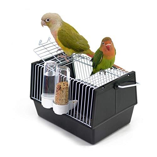 classifica gabbie trasporto uccelli