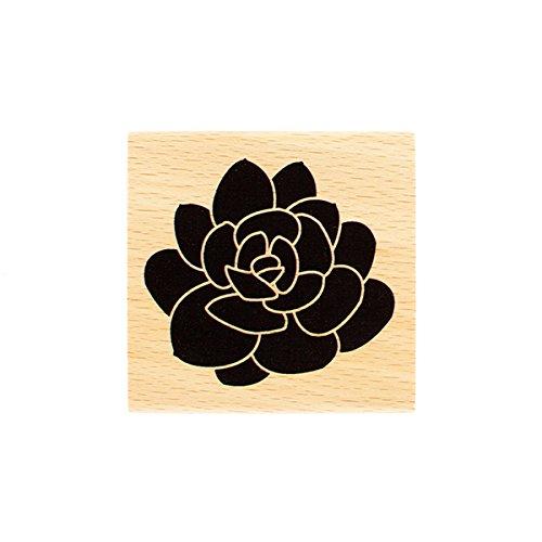 Florilèges Design FE216028 stempel, groot, vetplant, hout, 7 x 7 x 2,5 cm