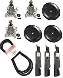 "Raisman 54"" Lawn Mower Deck Rebuild Kit Compatible with 3 Spindle Assemblies 187292, 3 Splindle Pulleys 197473, 3 Blades 187256, 1 Belt 196103"