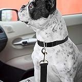 Hunde Adapter für Autosicherheitsgurt . Auto Hundegurt verstellbar von 40 bis 60 cm 4913 - 2