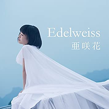 Edelweiss(TVアニメ「セントールの悩み」エンディングテーマ/TOKYO MX 高校野球中継2017 テーマソング)