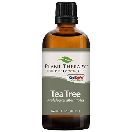 Plant Therapy Tea Tree Essential Oil 100% Pure, Undiluted, Natural Aromatherapy, Therapeutic Grade 100 mL (3.3 oz)