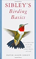 Sibley's Birding Basics: How to Identify Birds, Using the Clues in Feathers, Habitats, Behaviors, and Sounds by David Allen Sibley(2002-10-01)