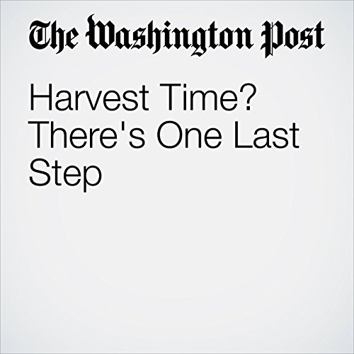 Harvest Time? There's One Last Step cover art