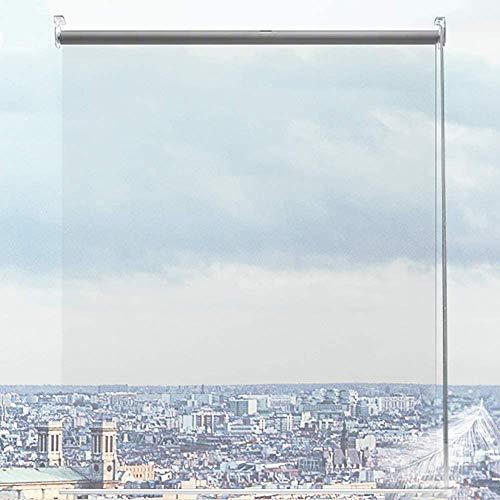 HYDT Persianas Enrollables Transparentes para Exteriores con Herrajes, Pérgola Balcón Ventana Aislamiento Persiana/Cubierta, Resistente Al Viento y a La Lluvia (Size : 80×200cm)