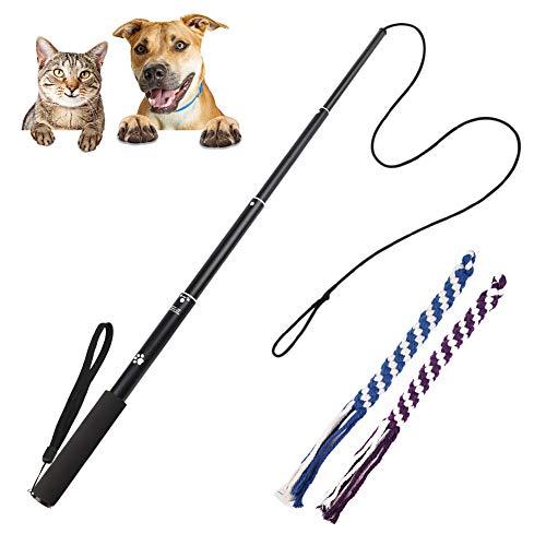 FEALING Interaktive Hundespielzeug, Hunde Draussen Angel Kauspielzeug mit 2 Seil Hundeangel Pole Haustier Teaser für Training Übung