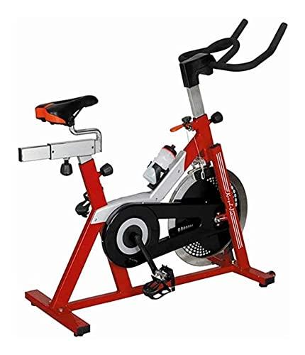 DJDLLZY Ciclismo Indoor Bicicleta estacionaria - Profesional de Bicicleta de Ejercicios Bicicleta estacionaria - con Soporte for Botella de Agua for hogar Cardio Entrenamiento de la Gimnasia (Rojo)