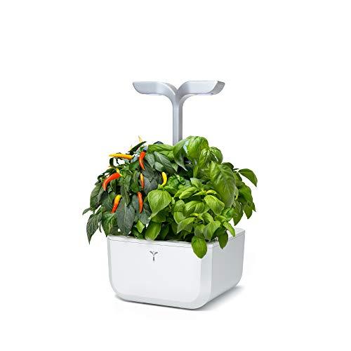 Véritable Huerto de Interior Exky® Smart (Arctic White) - Fabricado en Francia - Jardín Inteligente Compacto y Autónomo con su tecnología Adapt 'Light - Suministrado con 2 Lingots®