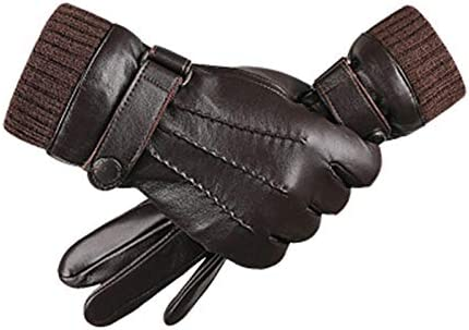 Lupovin-Keep Warm Touch Screen Sheepskin Gloves Raincoat Windproof Motorcycle Racing Good Finger Glove Non-Slip (Color : Coffee, Size : 2XL)