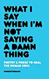 What I Say When I'm Not Saying A Damn Thing - Robert M. Drake