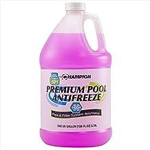 Best Champion Non-Toxic Swimming Pool Anti-Freeze - 1 Gallon Review