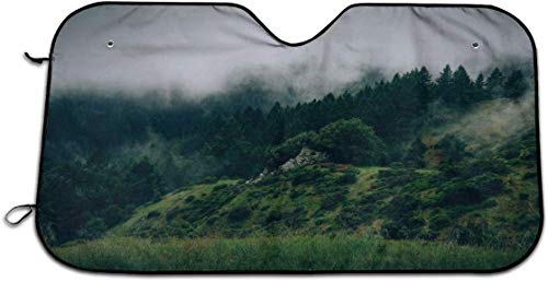 YJWLO Primeval Forest in the Clouds Pare-brise avant pliant Protection UV 129,5 x 69,8 cm