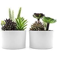 KELZIA Plantas Artificiales - 2 Macetas con Decoraciones de Plantas Falsas - Escritorio de Oficina Mesa Ventanas Repisas Chimenea Estanteria - Regalo de Decoración para Ocasiones Especiales (Cilindro)