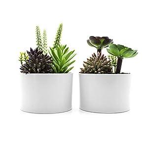 KELZIA Plantas Artificiales – 2 Macetas con Decoraciones de Plantas Falsas-Escritorio de Oficina Mesa Ventanas Repisas…