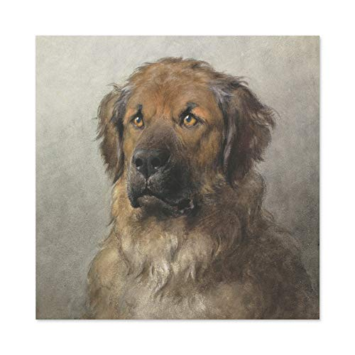 Eerelman Head Leonberger Giant Dog Painting Premium Wall Art Canvas Print 24X24 Inch Malerei Wand