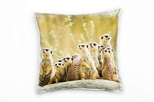 Paul Sinus Art Tiere, braun, grün, Erdmännchen, Afrika, Wildnis Deko Kissen 40x40cm für Couch Sofa Lounge Zierkissen - Dekoration zum Wohlfühlen