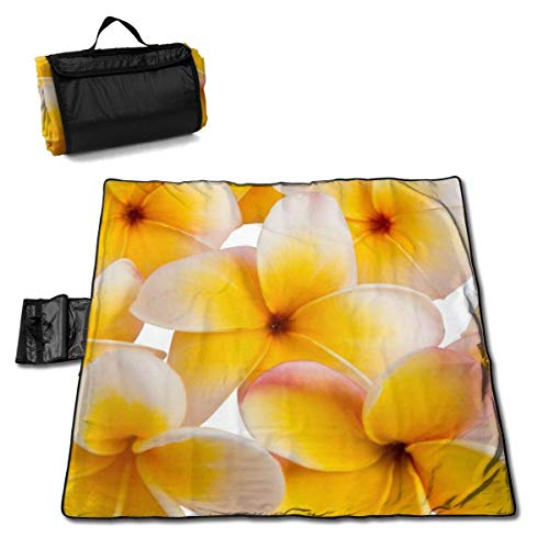 Suo Long Petite Couverture de Pique-Nique de Fleur de frangipanier Jaune avec Tapis de Pique-Nique à Main pour Camping pelouse de Parc de Plage