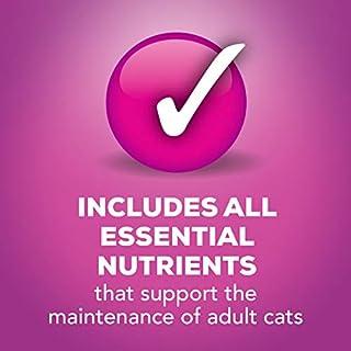 ارخص مكان يبيع Purina Friskies Poultry Adult Wet Cat Food Variety Pack - (32) 5.5 Oz. Cans