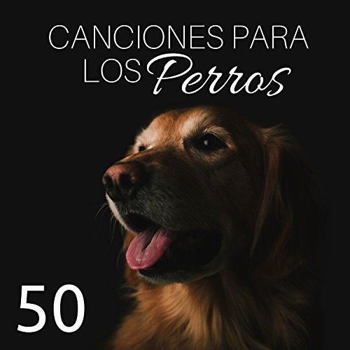 50 Canciones para los Perros: Música Relajante para Perros con los Sonidos...
