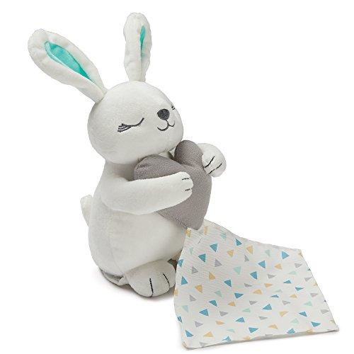 Summer Infant Little Heartbeats sucette, Bunny