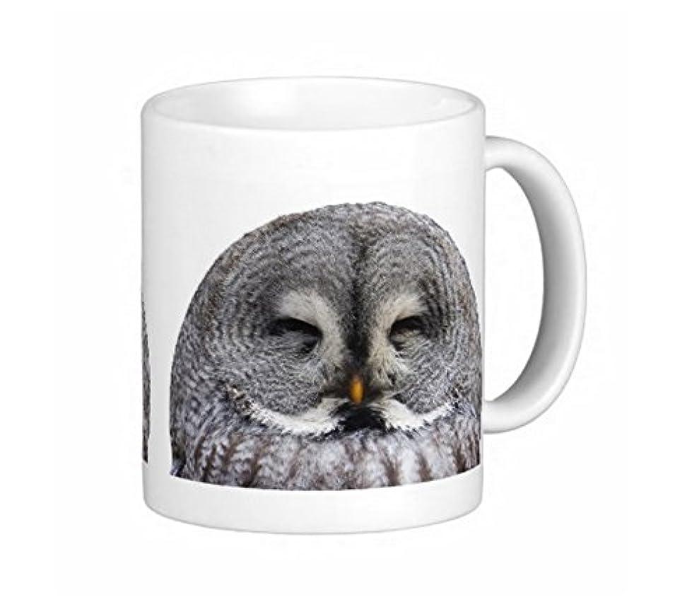 許容できる出口楽観的カラフトフクロウのマグカップ:フォトマグ(世界の野鳥シリーズ)
