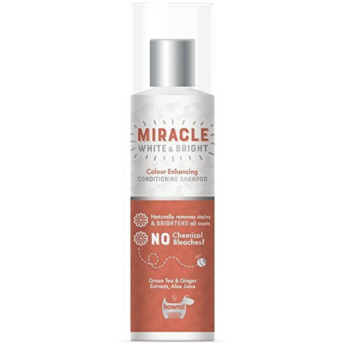 Hownd Miracle White and Bright Farbverstärkendes Pflege-Shampoo