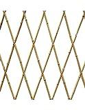 Faura 120 X 240 cm - Celosia Extensible Bambu