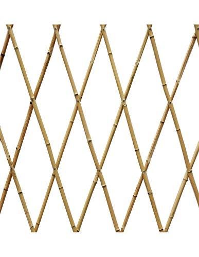 Faura 90 X 240 cm - Celosia Extensible Bambu
