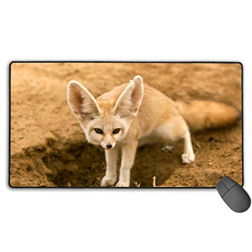 Fennec Foxnon-Slip Rubber Mousepad Custom Rectangle Mouse Pads For Computers Laptop The Mouse Pad White One Size