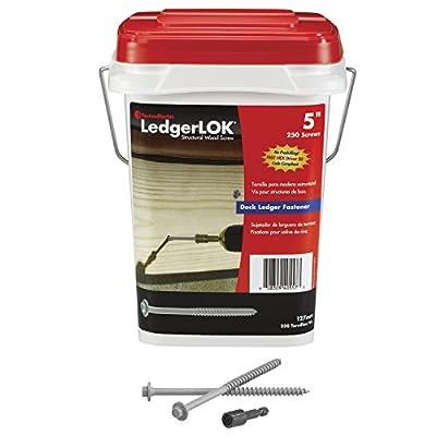 FastenMaster LedgerLOK Ledger Board Fastener, 250-Pack