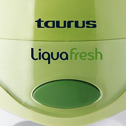 Taurus 924683