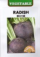 【輸入種子】 RADISH 黒丸大根 藤田種子のタネ