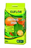 Euflor Zitruserde 15 l Tragebeutel aufgedüngte Spezialerde für alle Zitrusgewächse und mediterrane Kübelpflanzen im Innen- und Außenbereich, kräftige grüne Blätter und gesundes Wachstum