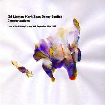 ED LITTMAN, MARK EGAN, DANNY GOTTLIEB- IMPROVISATIONS