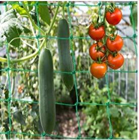ZoneYan Rankhilfen für Kletterpflanzen,...