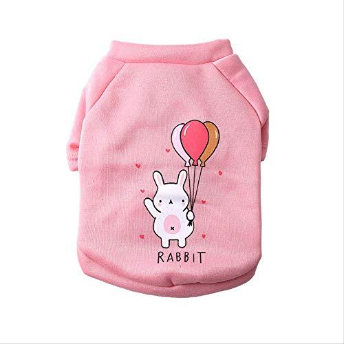 Liujingxue Huisdier kleding, fluweel en dikke hond kleren, XL, Rabbit Balloon