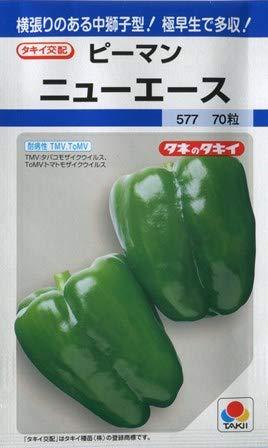 タキイ種苗 ピーマンニューエース 野菜種タキイ交配春まき/70粒