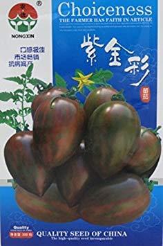 2018 heiße Rare Kaffee Tomate OrganicSeeds, 1 Original-Pack, 300 Samen/Pack, süße saftige Tomate Indoor Pflanzung # NF624