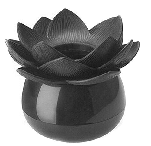 EJY Cure-dent Coton-Tige Holder Mode 4 Couleurs Boîte de Rangement Pick Cas Toothpick Lotus Maison Decor (Noir)