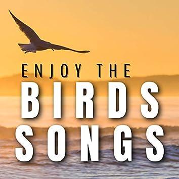 Enjoy the Birds Songs