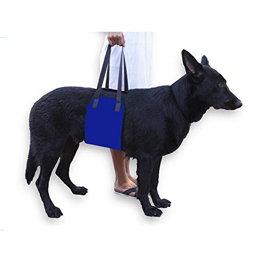 Pet Supply Dog Walking Lift Harness Sling,Helps Dogs with Weak Front Or Rear Legs Stand Up, Walk, Get into Cars, Climb Stairs. Best Alternative to Dog Wheelchair,Blue,M