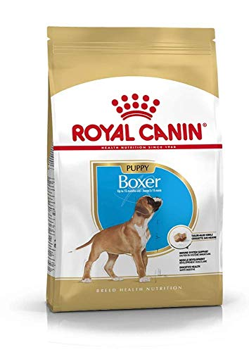 Royal Canin C-08933 S.H. Nut Boxer Junior - 12 Kg