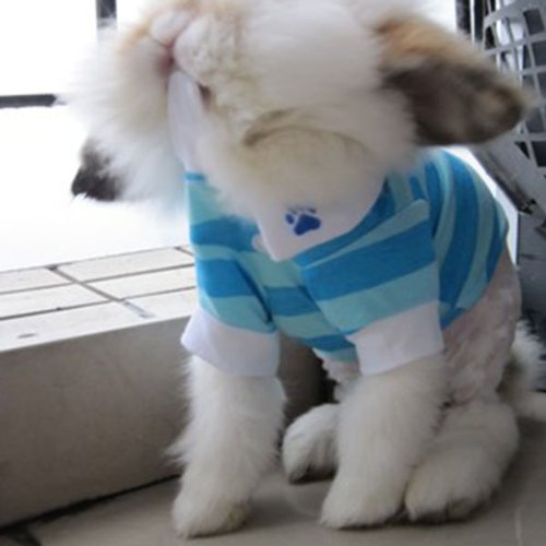 HuntGold 100% design de mode en coton rayé coloré t-shirt pour chien(blue Taille: L)