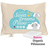 Toddler Pillow & Pillowcase Made in USA - Certified Organic Cotton -...