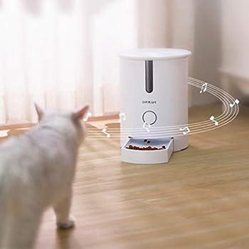 Nourrisseurs et porte-gamelles Mangeoire petit chargeur automatique pour animaux de compagnie alimentation quantitative de minutage alimentation intelligente artefact de chat alimentation pour chronom