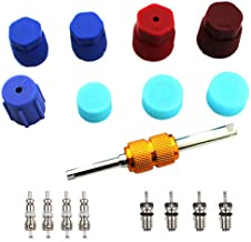 Air Conditioning Valve Core Kit   Car & Home AC R12 R134a Teflon Seal Refrigeration Schrader Valve Core with Valve Stem Core Rmover Tool Air Conditioning System Seal Caps Kit